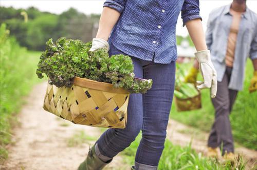 春季养生:立春养生重在注意保暖下半身
